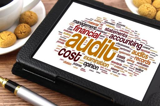 Financial Audit techniques