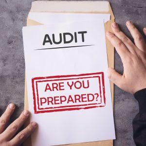 Audit techniques